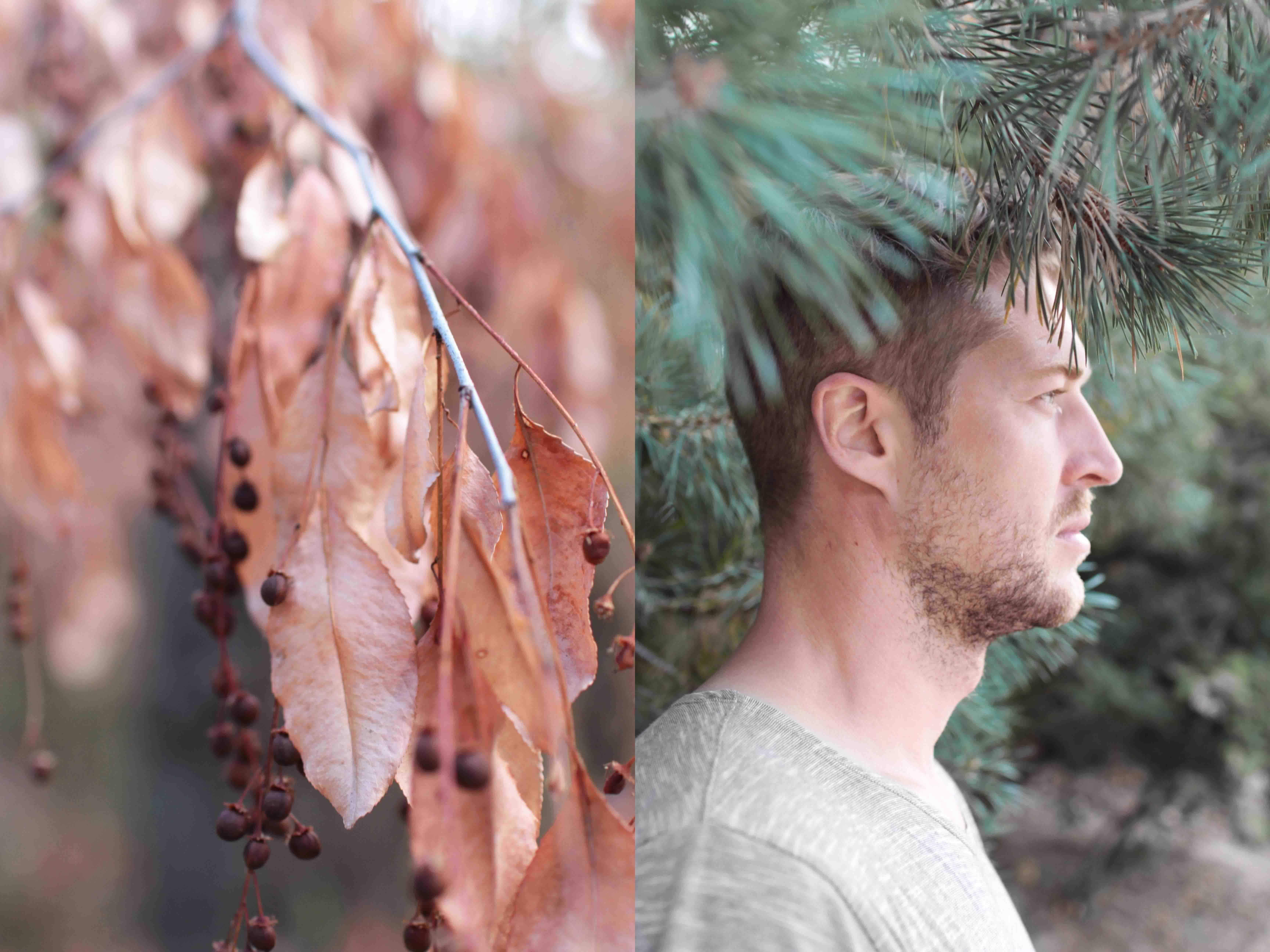 woodland naturalliving lifestylephotography lifestylefotografie by kyra de vreeze